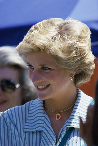 Diana S Yellow Gold Earrings